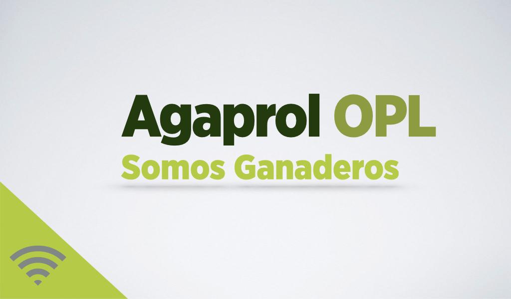 Agaprol se consolida como la mayor OPL de España